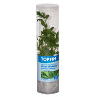 Top Fin® Water Wisteria size: Large