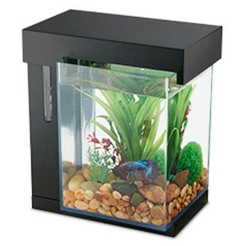 National Geographic National Geogrpahic, 1 Gallon Easy Clean Aquarium size: 1 gal