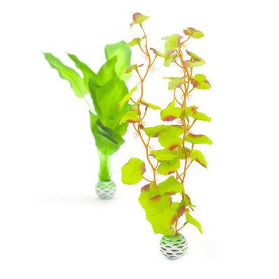 biOrb Silk Plant Pack - Medium