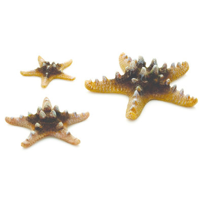 biOrb Starfish Set Aquarium Sculptures - Natural