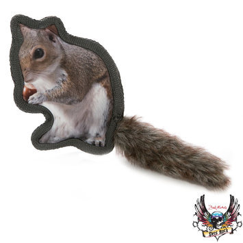 Bret Michaels Pets Rock, Critter Squirrel Dog Toy - Squeaker