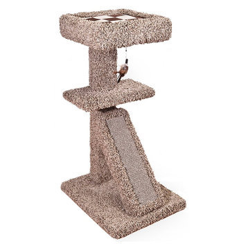 Whisker City® Scratch and Nest with Bed Cat Scratcher size: 20.75