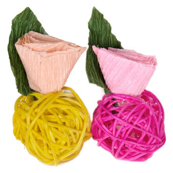 All Living Things® Small Pet Blossom Chews size: Small