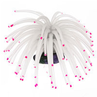 TETRA Blooming Collection White Anemone