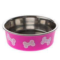Top Paw® Bella Bone Dog Bowl size: 4 Fl Oz, Pink