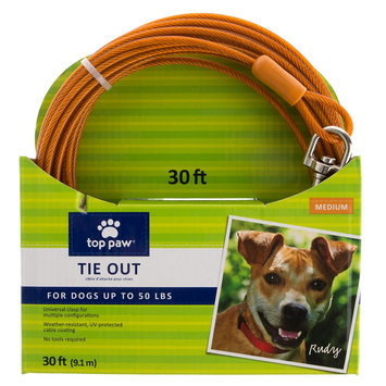 Top Paw® Dog Tie Out size: 30 Ft, Orange