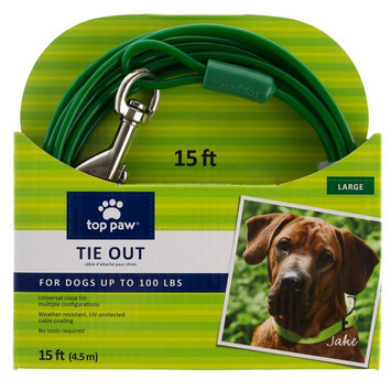 Top Paw® Dog Tie Out size: 15 Ft, Green