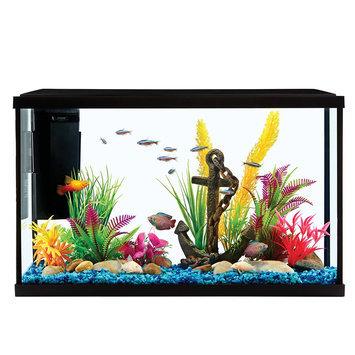 Grreat Choice® Aquarium Starter Kit size: 10 gal