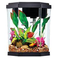Top Fin® 2 Gallon Intrigue Aquarium Kit size: 2 gal