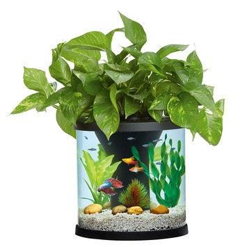 Top Fin® Aquaponics 3.5 Gallon Desk Aquarium size: 3.5 gal