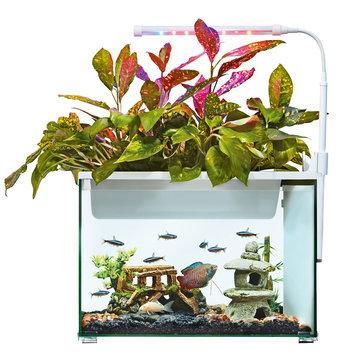Top Fin® Aquaponics 5 Gallon Desk Aquarium size: 5 gal