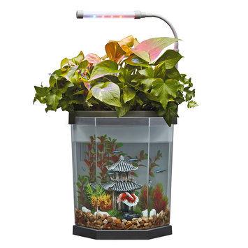 Top Fin® Aquaponics 2 Gallon Desk Aquarium size: 2 gal