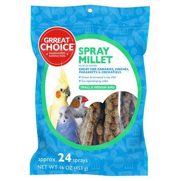Grreat Choice® Spray Millet size: 24 Count