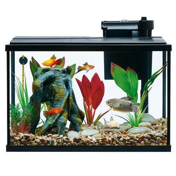 Top Fin® Essentials Aquarium Starter Kit size: 5 gal