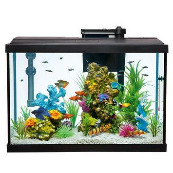 Top Fin® Essentials Aquarium Starter Kit size: 20 gal