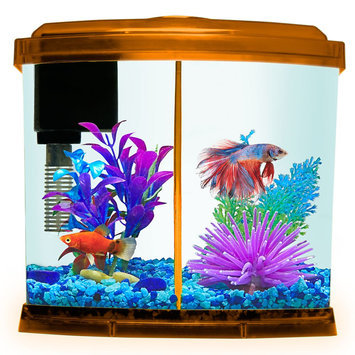 Top Fin® 1 Gallon Liquidy Split Aquarium, Orange