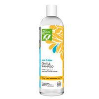 Only Natural Pet Green Tea and Mandarin Orange Gentle Shampoo size: 12 Fl Oz