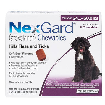 NexGard for Dogs - 6 Pack size: 24.1-60 lbs