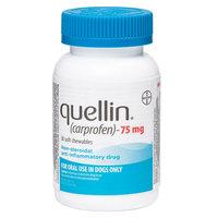 Quellin Soft Chews (carprofen) size: 75 mg