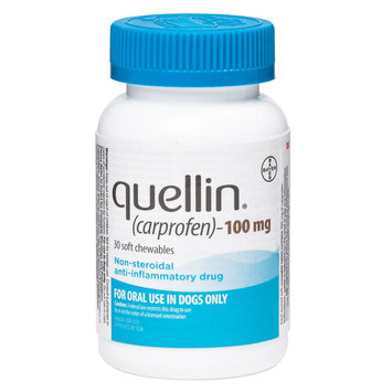Quellin Soft Chews (carprofen) size: 100 mg
