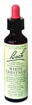 Bach 0234054 Flower Remedies Essence White Chestnut - 0.7 fl oz