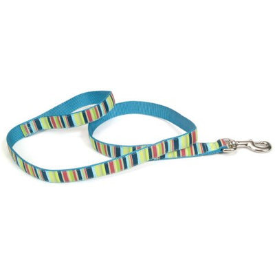 Pet Attire Multi Stripe Ribbon Lead 5 eighths x 6 foot
