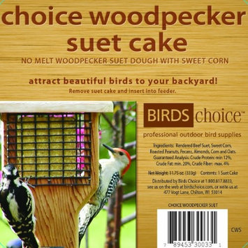 Bird's Choice Choice Woodpecker Cake - 11.75 oz