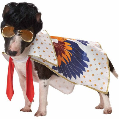Spirit Nothing But A Hound Dog Pet Lg