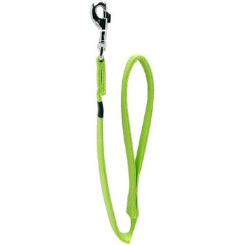 Dogit Nylon Single Ply Dog Leash with Silver Plate Bolt Snap, Medium, 5/8-Inch, Green