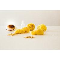 Natural Sea Tampons |5pcs| by Poseidon Sponge