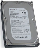 Seagate Barracuda 7200.9 Hard Drive - 250GB - 7200rpm - 300MBps Serial ATA - II - Serial ATA/300 - Internal