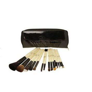 Professional Cosmetic Makeup Brush Set with Case: 15 Brushes