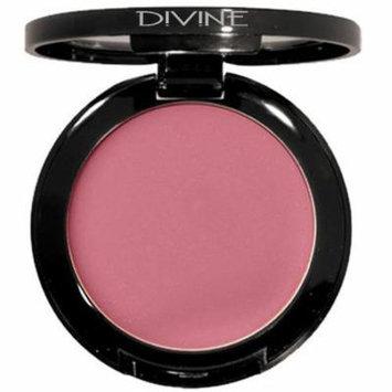 Divine Skin & Cosmetics Crèmewear Cream Blush 2.8G Pretty Pink