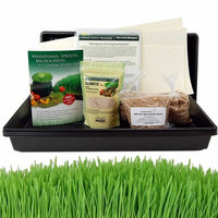 Living Whole Foods Organic Hydroponic Wheatgrass Growing Kit - Grow & Juice Wheat Grass