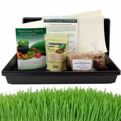 Living Whole Foods Organic Hydroponic Wheatgrass Growing Kit - Grow & Juice Wheat Grass