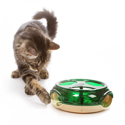 Ourpet's Company Pet Zone® Thrill of the Chase Cat Toy