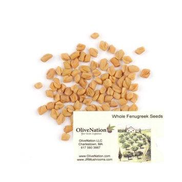 Fenugreek Seed 16 oz by OliveNation