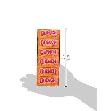 Quench Gum Twelve 10 Piece Packs Orange and Fruit Flavor [Orange Fruit Punch]
