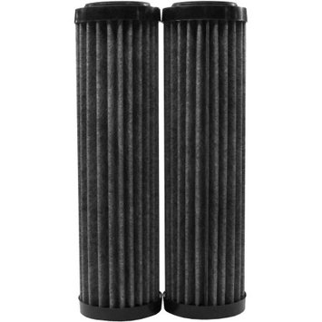 Ecopure Fact Universal Whole Home Filter (2-Pack)