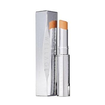 [WELLAGE] Post Procedure Point Concealer SPF30 : Beauty