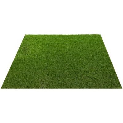 Envylawn EnvyPet Standard 3 ft. x 3 ft. Artificial Turf Mat