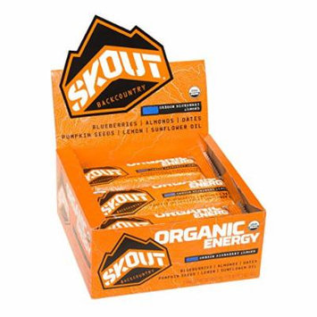 Skout Organic Energy Bar, Oregon Blueberry Almond, 12 Bars