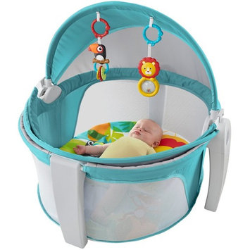 Fisher-Price On-The-Go Baby Dome, Blue/White
