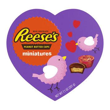 Reese's Peanut Butter Cup Miniatures Heart Box, 7.1 Oz.