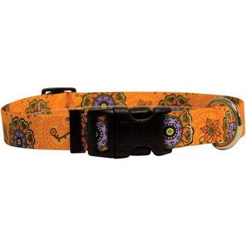 Yellow Dog Design Yellow Dog Collar Medium 14
