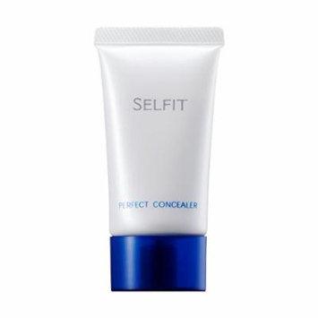 Shiseido Selfit Perfect Concealer