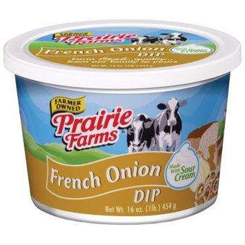 Prairie Farms Dairy Prairie Farms French Onion Dip, 16 oz