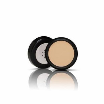 [Missha] the Style Perfect Concealer #1 Light Beige 3g Natural Cover Makeup