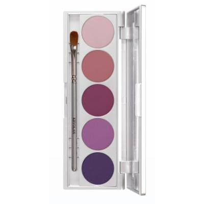 Kryolan 9335 SHADES 5 Color Eye Shadow Makeup Palette, 19 color options available (Paris)