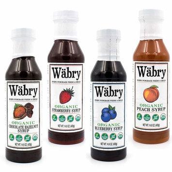 Wäbry Organic Syrup 14.9 oz Chocolate Hazelnut, Strawberry, Blueberry, Peach (Variety 4 Pack)